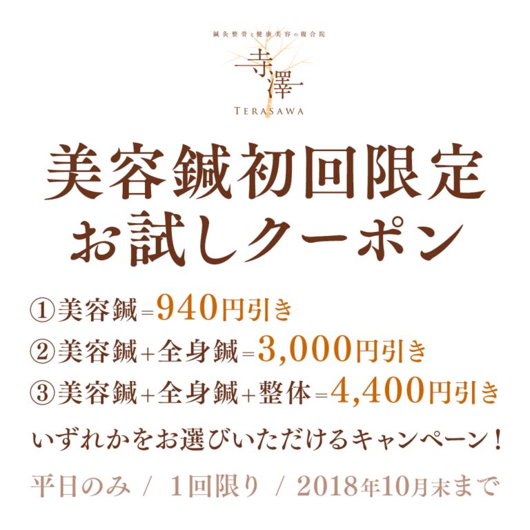 大阪・住之江のてらさわ式美容鍼お試しクーポン